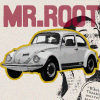 Mr.RooT